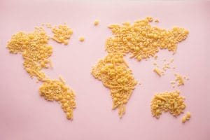 dried pasta art laid out in the shape of the countries of the world